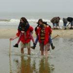 LOUP - Bray-Dunes 2008